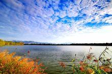 官厅水库湿地公园