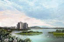 湿地、白鹭、周边游、惠州周末放松好去处~