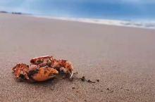 龙岛海边度假