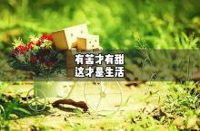 人間冷暖 生活 總是有苦有甜的 這才有奔頭 #中秋国庆出游打卡  #上海怎么玩 #玩转户外 #城市骑