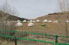 大美新疆南山牧场