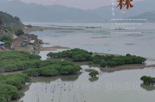 醉美霞浦|梦里的山水河塘