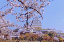 日本第一城
