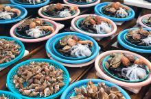 札嘎其市场采购鲜活海鲜