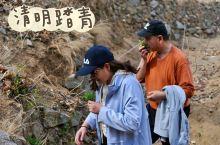 河北省青龙县官场乡的梨花你知道吗?