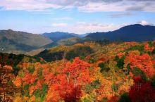 美丽的巴中光雾山红叶