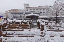 新泻县「神立滑雪度假村」