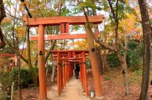 宝满宫灶门神社的秋色!