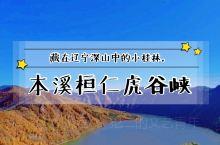 辽宁本溪丨深山中的小桂林,桓仁虎谷峡。