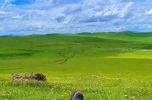 喜欢这样躺在草原上发呆