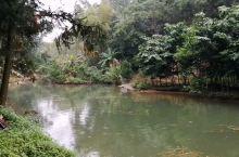 去采访《龙州媚》MV拍摄,在龙州县八角乡菊功屯发现山野美景,遇到两只番鸭飞到湖对岸。