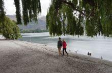 宁静的瓦纳卡湖畔