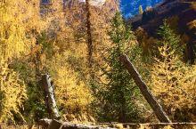 秋季的四姑娘山