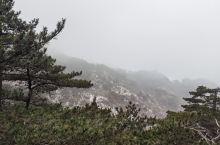 黄山归来不看岳,确实走完黄山,就可以看到不同的地貌,不同的山峰美景。如果碰上云海会很幸运。晚上在山上