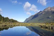 新西兰南岛,自然风光无限好,空气清新,羊驼是这里的神兽,很萌,很可爱,可以给它们喂食。