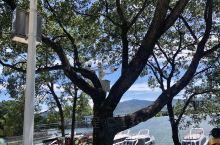 陆水湖好美,有点小九寨的意思,值得逛逛