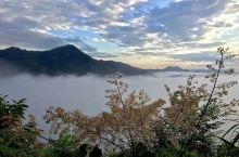 清晨的云雾