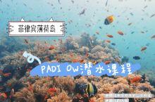 薄荷岛|获得PADI潜水证书