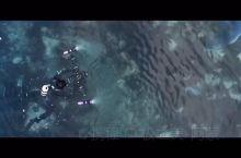 在南极潜水是什么体验