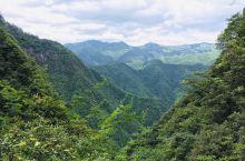 上午去了南尖岩,在酷热中爬山上下。回遂昌途中去了神龙谷,神龙谷海拔900米左右,山谷前半段是绿色包裹