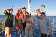 一个有趣的名字妈妈拍丝瓜岛,招牌长尾鲨
