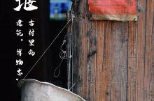 """这个""""江南小丽江"""",也是四朝民居博物志!"""