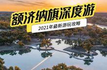 额济纳旗胡杨林 2021年全新游玩攻略