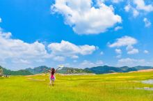 云南罗平:20万亩油菜花海,地球*美春天