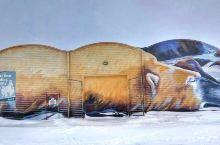 一个充满神秘色彩的地方——北极熊监狱
