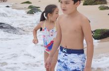 Laniakea海滩看海龟!