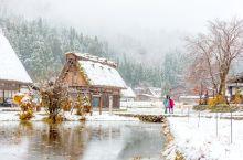 冬天的白川乡更接近童话世界里的样子