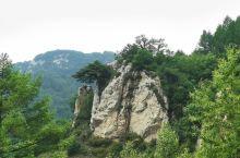 五岳寨的五岳松,也挺好看的
