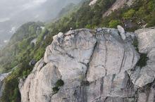 龟峰山上看杜鹃