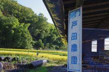 日本冈山观光|体验篇