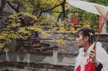 北京千年大觉寺,寻一场风花雪月的秋