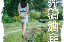 安吉漂流宝藏:仙龙峡旁,香卉精油庄园