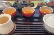 在晋江品茶