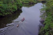 亚马逊河有多可怕?为何没有桥梁跨越?甚至无人敢下河游泳