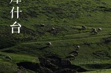 琼库什台打卡,在原始森林里和牛马羊群一起