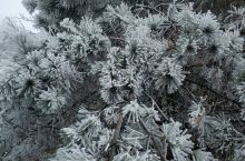 南岳衡山雪景,期待