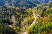来到河南省新县大别山区,这里有个苏河乡有个墨河村,村里有条墨河大峡谷。金秋时节,沉睡千年的大峡谷突然