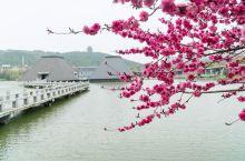 徐州汉文化景区,整个景区占地1400亩,是多功能的一个精品旅游景区,同时也是包含历史博览、园林景观的