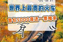 中国最贵的火车票