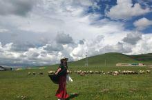原始纯静的甘南大草原~河南蒙拉大草原