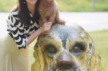 苏州|带狗狗来金鸡湖边野餐