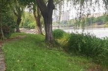 林间小道 安静空气清新 山水一幅画 适合陶冶情操 又有批把果可以采摘 旅行垂钓野餐不错的地方
