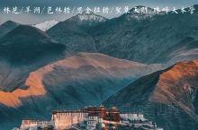 你见过这样的西藏么🧐