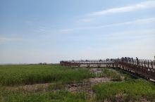 来吧,一起去钓小螃蟹[Grin]西沙湿地公园,风景优美、空气清晰、去聆听大自然的声音;一路走到长江尽
