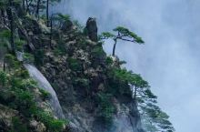 多多-黄山风景美如画