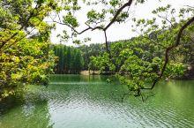 江西天花井国家森林公园是由园内海拔583米的天花井和海拔218米的林角山及道凹等几座山峰所组成。土壤